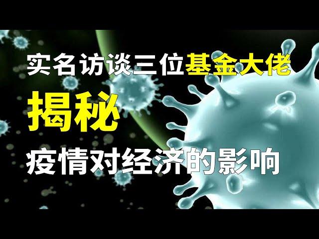 新型冠状病毒肺炎疫情对大家经济生活以及中国经济造成什么影响 实名访谈3位基金大佬 财经圆桌访谈主题2 上