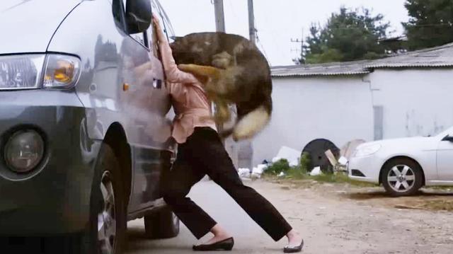 电影: 为了替女儿报仇, 他训练大狼狗咬死仇人