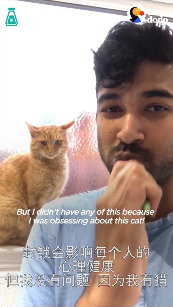 小哥发现自家露台上突然开始出现一只大橘猫...