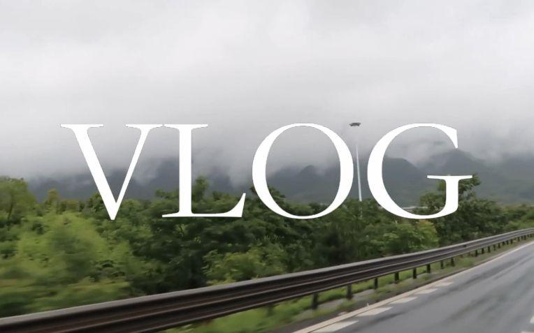 Vlog: 山上的艺术家之村 7天内变成能够卖画的艺术家