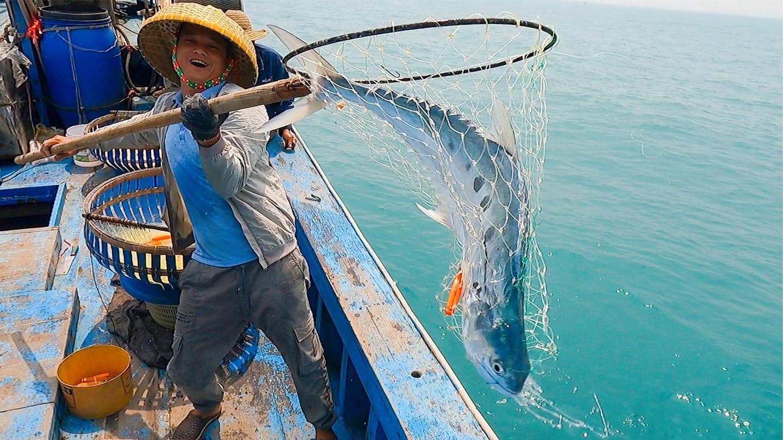 鱼贩子提前预定了大货, 没想到还有一群人围抢, 当场就让她赚翻了