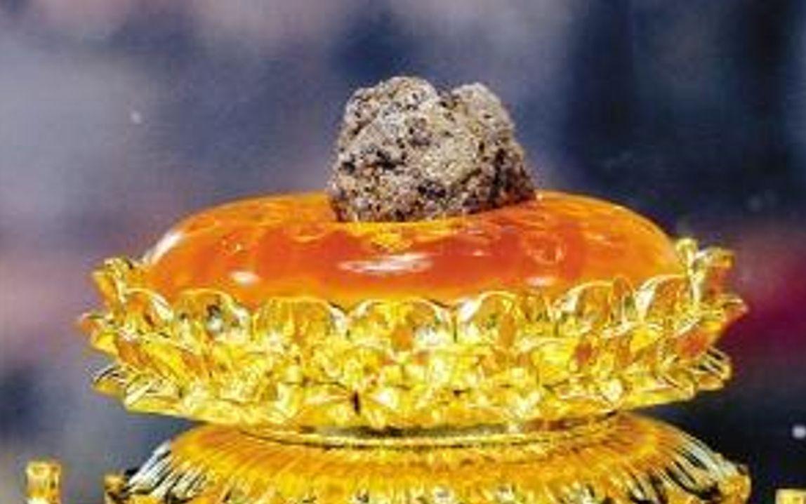 佛教界至高无上圣物, 释迦牟尼佛顶真骨出土记: 地宫中的绝世珍宝