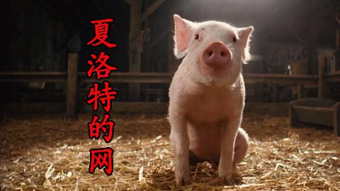 【森崎电影院】你努力的样子就像这只猪 童话喜剧《夏洛特的网》