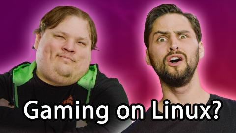 【官方双语】颤抖吧,微软!用Linux打游戏!新手完全指南#linus谈科技