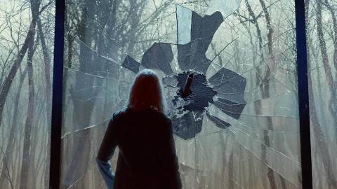 女子一觉醒来,被困在巨大玻璃墙里,打碎后却被外面的景象吓住了