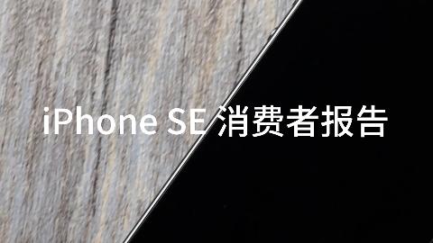 「FView出品 iPhone SE  消费者报告」