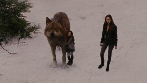 小女孩出生便被狼人守护,她的父母却是吸血鬼,一部冒险动作电影