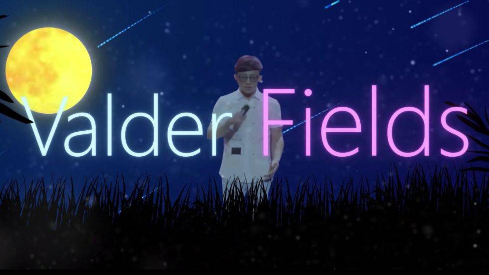 【波澜哥】Valder Fields