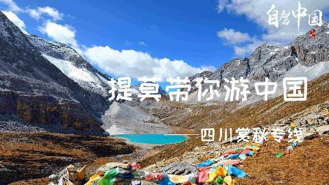 【提莫带你游中国】这一条线,串起四川最美的秋色