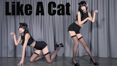 【黑桃】野猫掏心1.0猫步轻俏Like A Cat