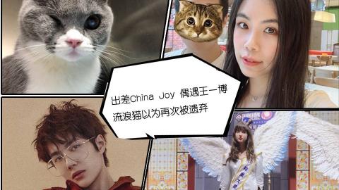 出差China Joy 偶遇王一博 流浪猫以为再次被遗弃