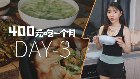 400元吃一个月:DAY3-闪闪做酸豆角炒鸡胗超下饭,普通人想要过得好就要不停忙