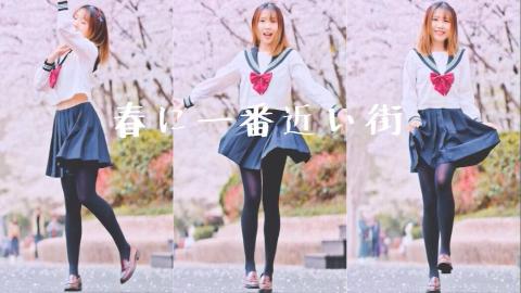 【雾奈】离春天最近的街道❀樱花