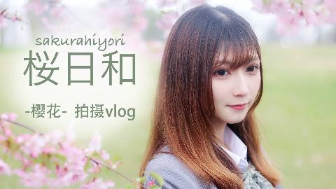 【欠】。桜日和 / 早春樱花拍摄vlog……