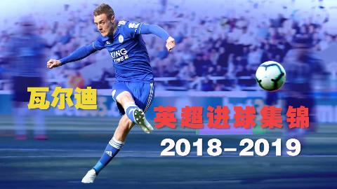 瓦尔迪2018-19赛季英超联赛进球集锦