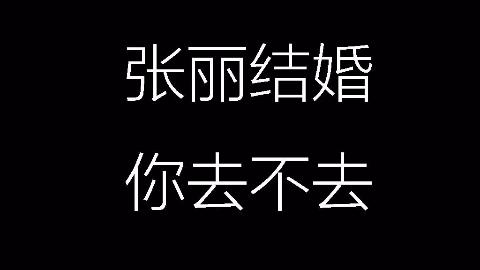 【每日音乐】白鸽 - 完整版