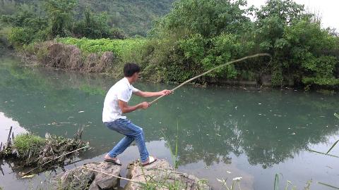小伙河边钓鱼真过瘾,甩竿都忙不过来,不料结尾悲剧发生了