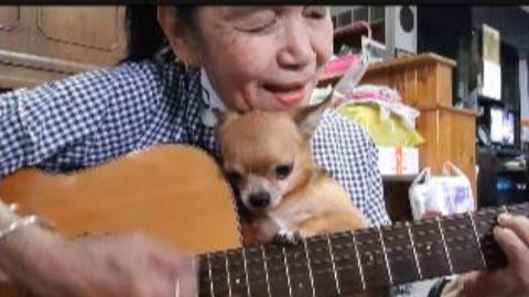【吉他弹唱】坚持一个爱好到老,老奶奶弹唱《Sha la la》,学吉他再晚也不迟