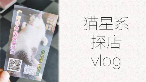 【阿呆呆】猫星系探店vlog