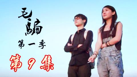 【神剧】:大快人心,制裁贪污受贿的教师,毛骗最全安利第十六期:第一季第9集