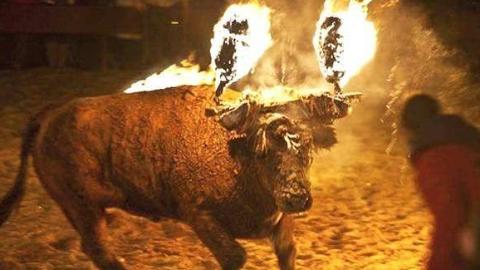 《只狼》火牛BUG,处决小兵后火牛躯干值直接满条忍杀~