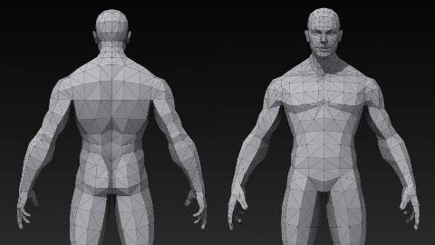 01.人体建模躯干部位一丨3D模型丨建模教程丨王氏教育集团