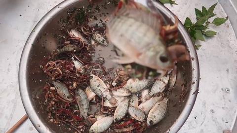 【东南亚吃播】活蹦乱翘的小鱼鱼刚捞上来拌拌就吃