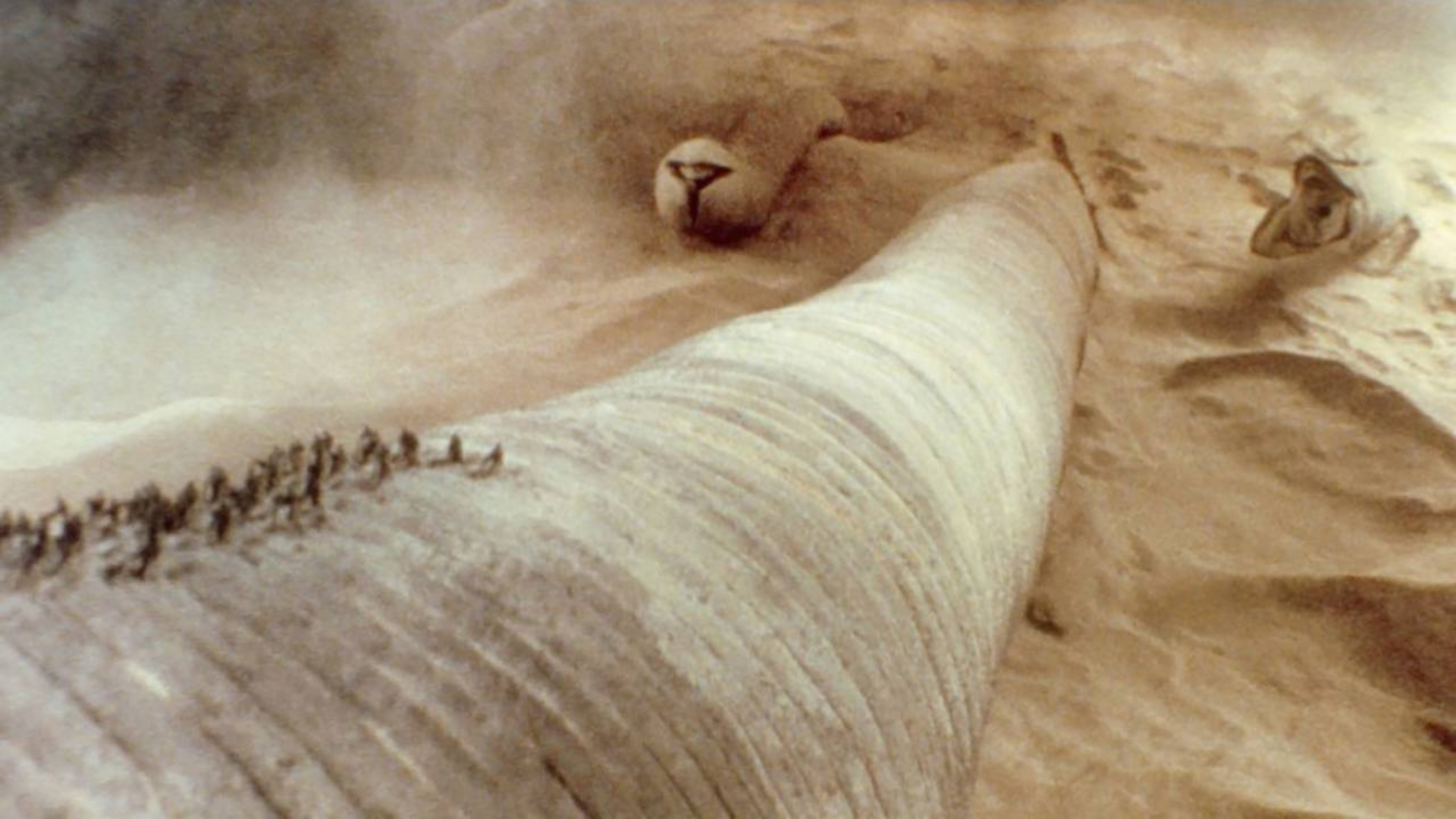 沙漠中暗藏恐怖沙虫,体长500米,一口就能吞噬整个矿场!速看经典科幻小说改编的电影《沙丘》