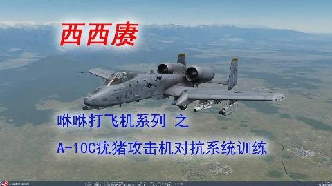 【西西赓】A-10C攻击机对抗系统训练