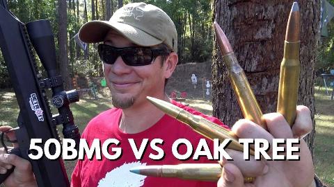 [Dustin Ellermann]测试躲在橡树后面能挡住.50子弹吗