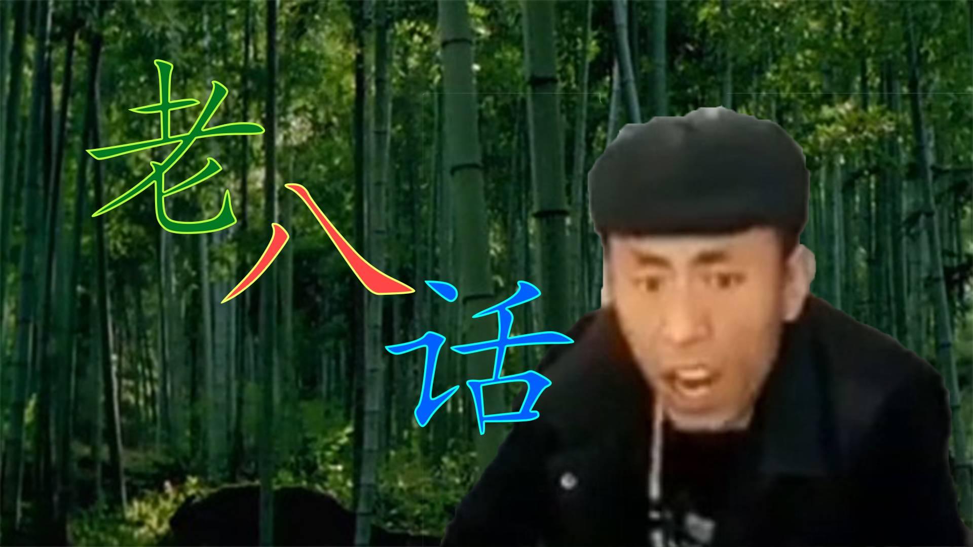【岛市老八】中国话