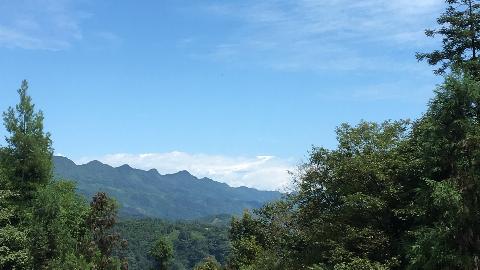 我的VLOG#1带你去野生动物园(碧峰峡)