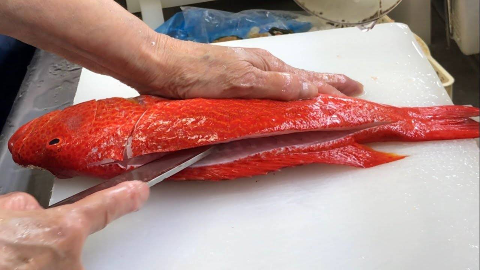 【日本美食】- 红色石斑鱼生鱼片