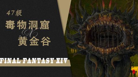 最终幻想14·47级副本·毒物洞窟黄金谷·FF14