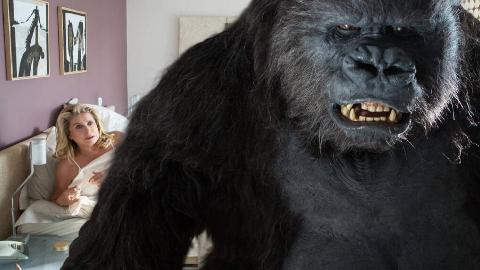 人类死亡日期被公布后,开始为所欲为,美女决定和猩猩一起生活