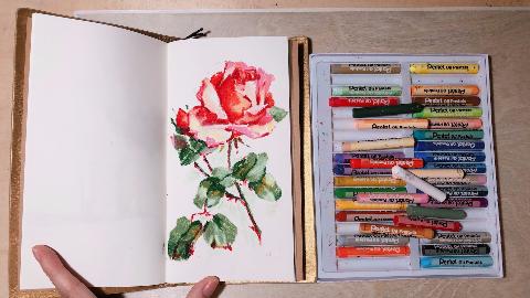「油画棒」入门级油画棒花卉绘制过程
