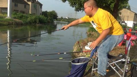 第51!野钓的魅力就在于下一竿不知道是什么鱼