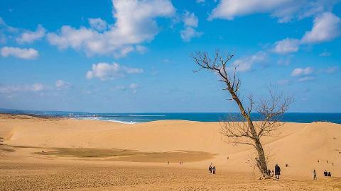 日本最大的沙丘:历史可追溯到10万年前,柯南在这里诞生!