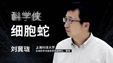 刘冀珑:从细胞到细胞蛇,我们正在解析生命的奥秘