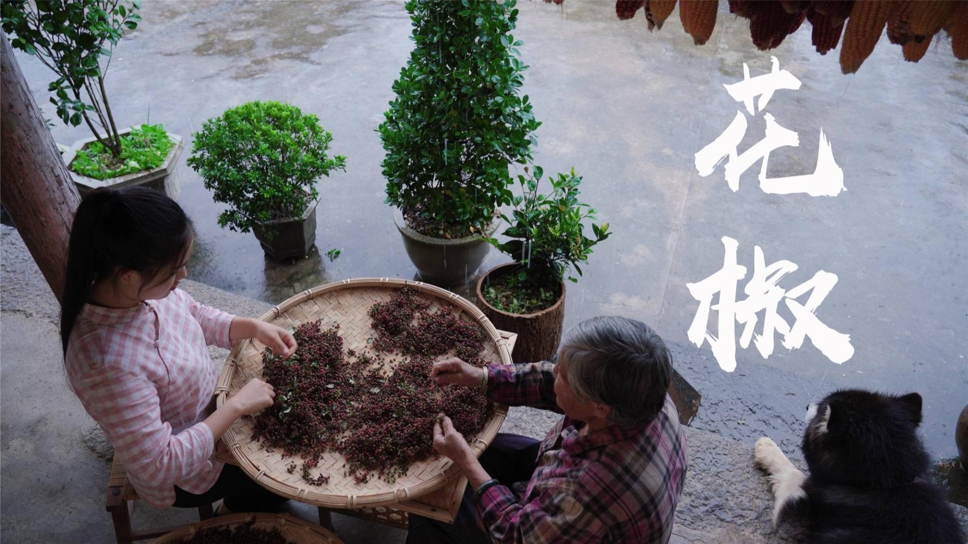 四季调料(三):花椒,麻辣菜品的灵魂伴侣
