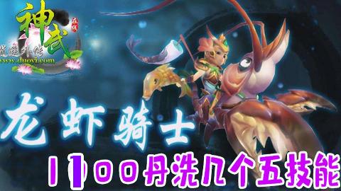 【神武3】1100还童丹与3张洗宠券能洗出几个5技能龙虾骑士