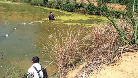 农村大叔捞鱼,捞到十几斤,捞鱼过程,好多鱼从网里飞出来