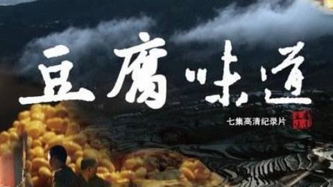 CCTV纪录片《豆腐味道》7集全