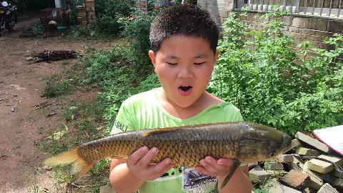小胖钓鱼,妙用番薯叶做诱饵,钓上2斤重的鱼,回家有蒸鱼吃