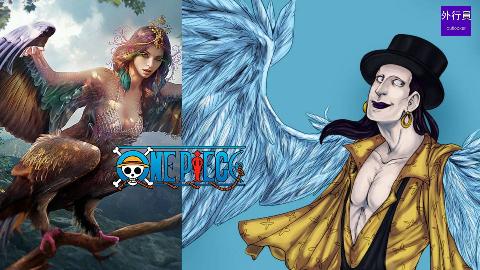 海贼王专题#248: 幻兽种美人鸟拉菲特
