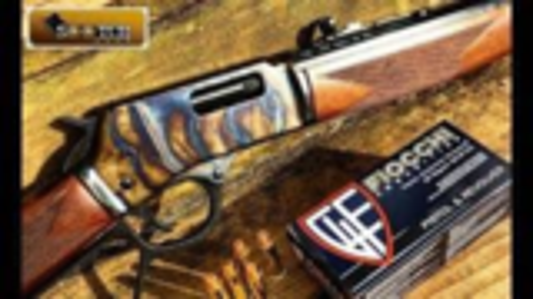 [sootch00]亨利.357表面淬火杠杆步枪