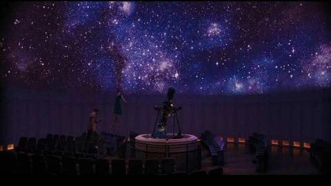 【City of Stars】——小橘猫