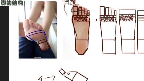 【脚的画法】动漫人物脚底的结构分析绘画过程 手绘漫画教程 手绘插画视频