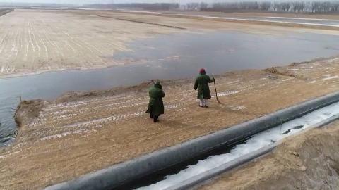 黄河水灌溉万亩良田