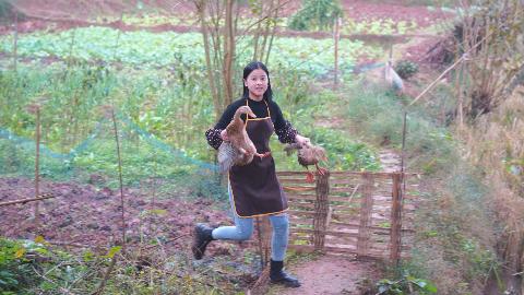漆二娃vlog:竹鼠被我抓回来了,师父说宰几只鸭子做成腊肉